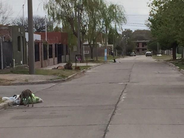 Barrios olvidados por la municipalidad